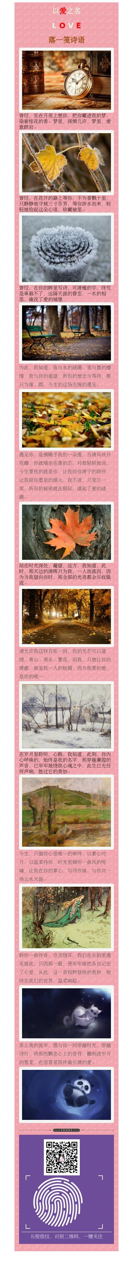 粉色背景文章模板,多彩微信公众号图文消息模板