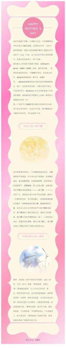 母亲节节日模板 粉红色微信公众号节日素材模板