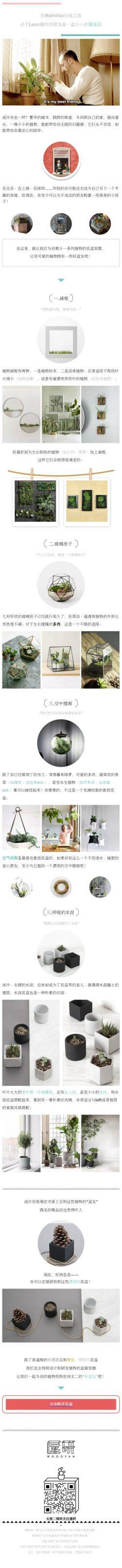 植物盆景盆栽花盆介绍清新微信文章模板