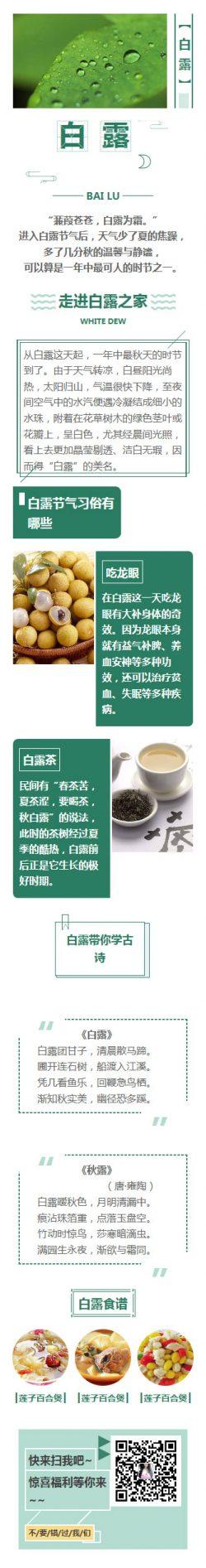 白露节气传统习俗节日模板