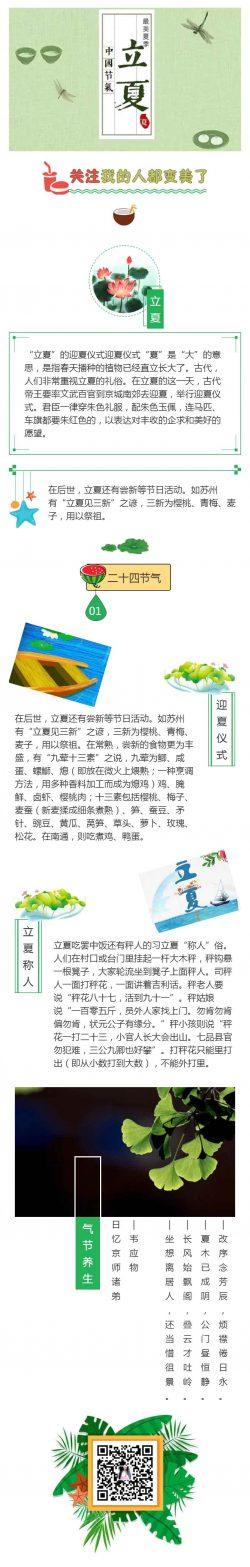 立夏二十四节气中国传统节日绿色风格模板