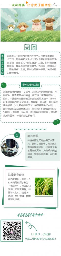谷雨二十四节气中国风传统文化绿色风格模板