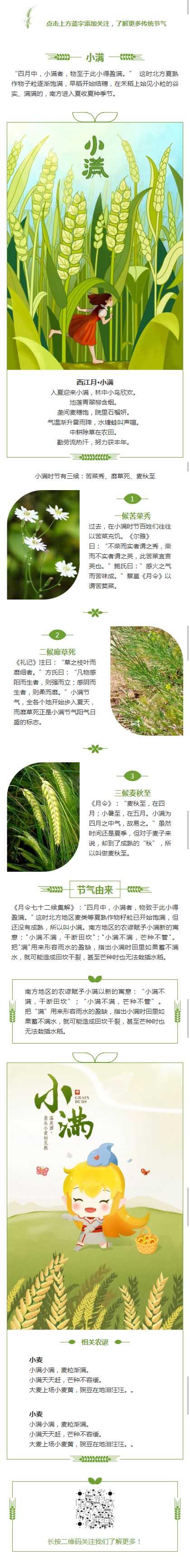 西江月·小满传统节气二十四节气之一中国传统节日