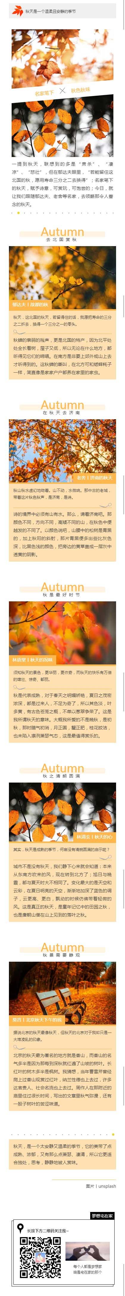 秋天是一个温柔且安静的季节金黄色落叶风格模板