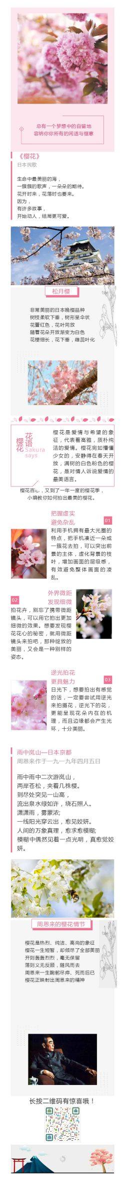 樱花日本民歌植物介绍百科 《樱花》