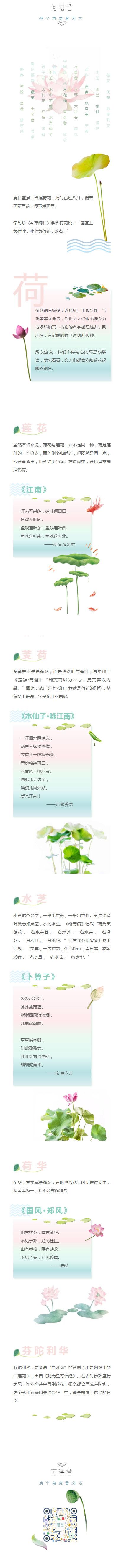 荷花莲花芙蓉诗歌作品赏析清新风格模板中国风
