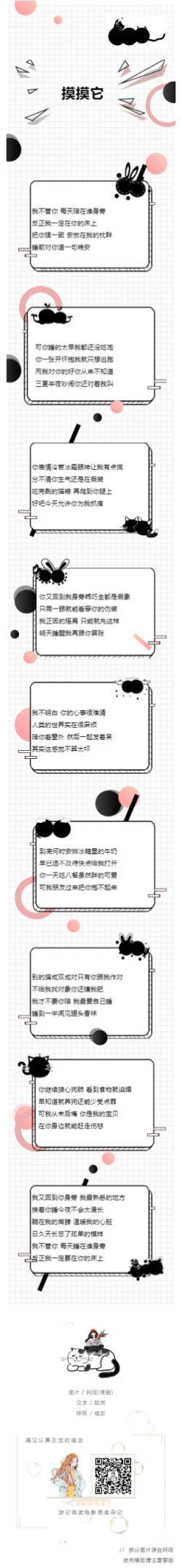 黑色可爱风格猫咪文章模板
