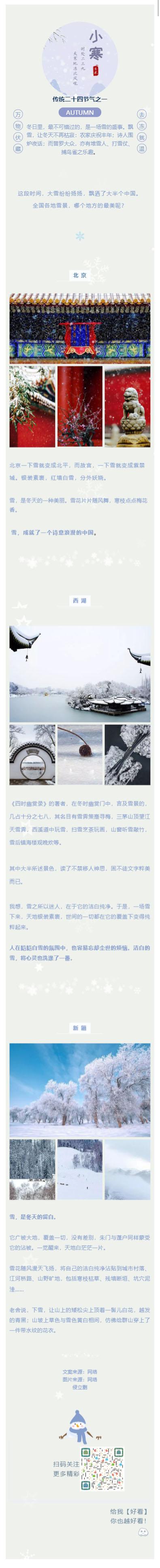小寒飘雪动态背景风格模板冬天传统节日微信模板