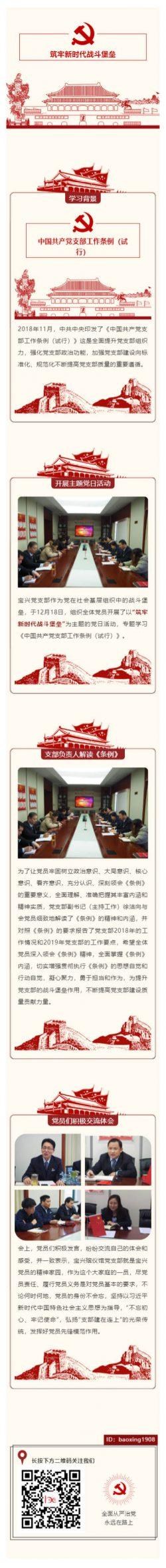 中国共产党支部工作条例党支部政治两会素材模板