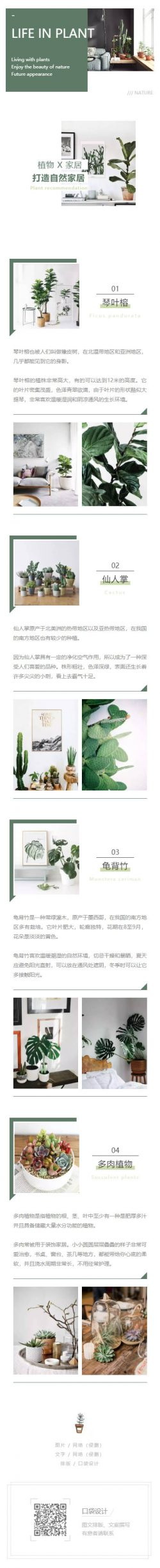 植物家居打造自然家居绿色风格模板