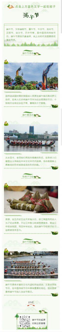 端午节竞赛龙舟中华文化传统绿色风格模板推文素材