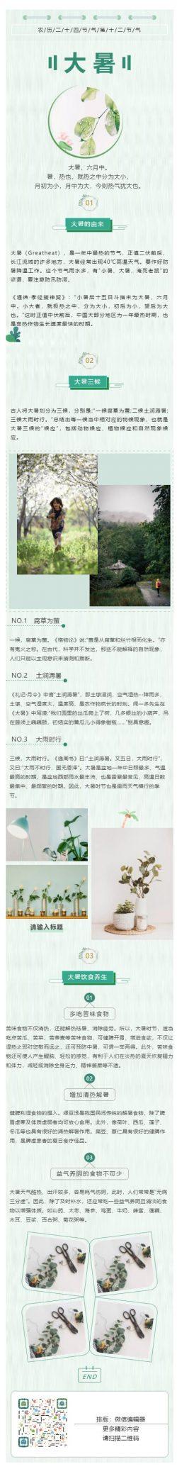 大暑二十四节气节日素材绿色风格模板推送图文