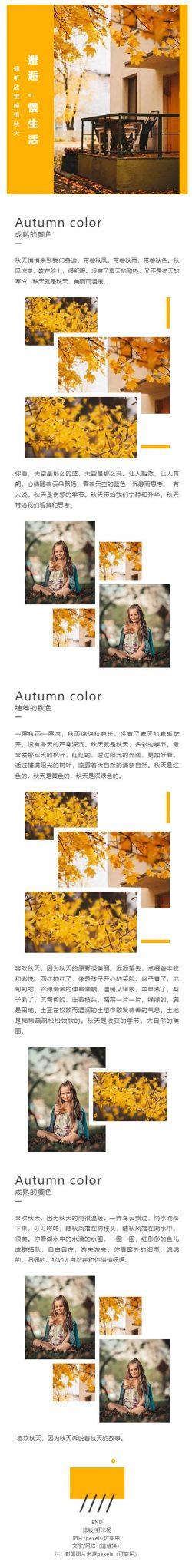 秋天立秋黄金黄色微信素材模板公众号推送图片模板