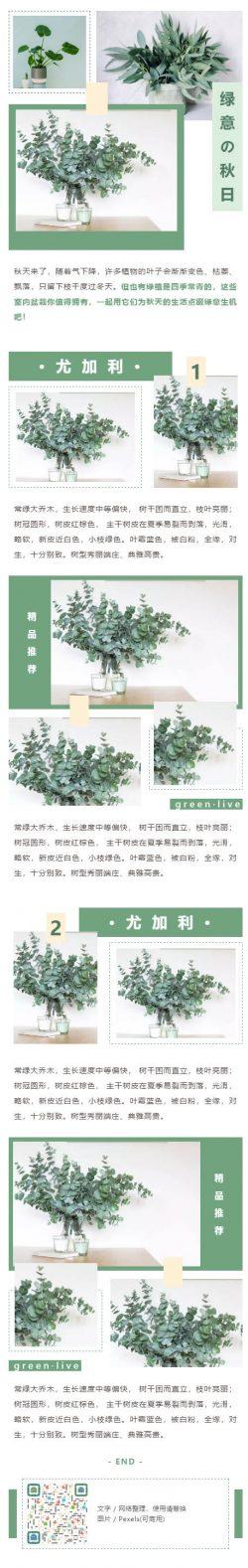 绿意绿植绿色植物微信公众号推文模板推送素材