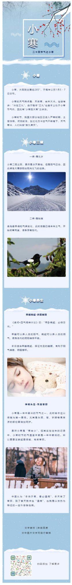 二十四节气之小大寒大寒冬季动态飘雪冷色风格微信推文模板