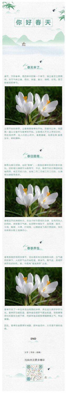春天来了绿色清新风格微信公众号推送图文素材背景图片水墨风格中国风