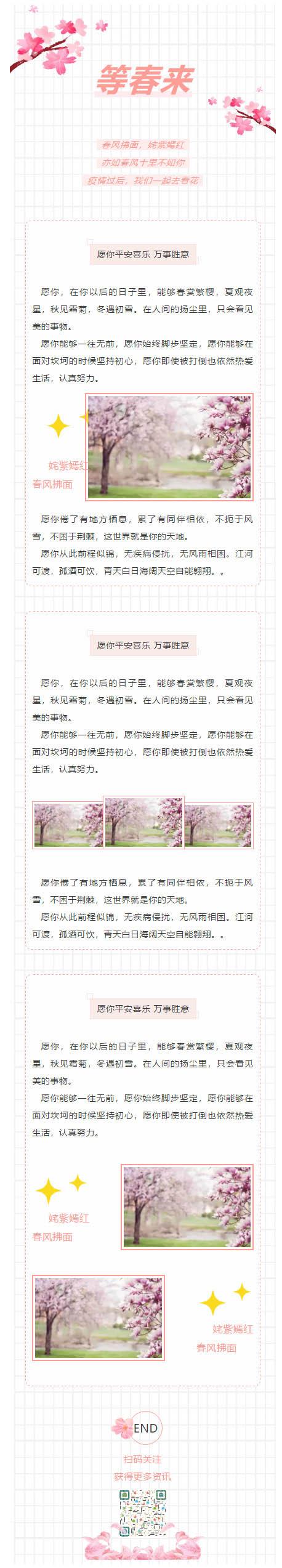 春天春风春光花开网格背景樱花微信公众号推送图文模板微信推文素材