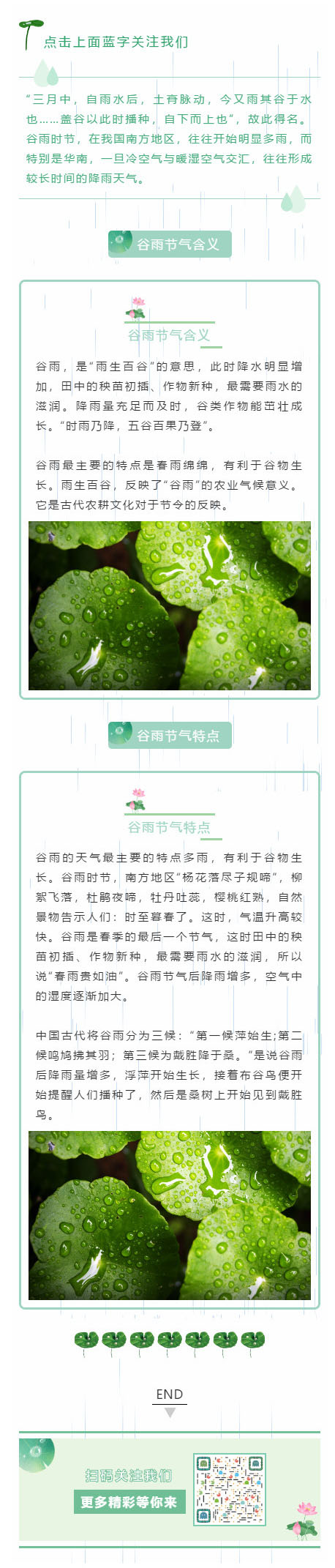 谷雨节二十四节气绿色动态背景水滴微信模板公众号推送文章模板