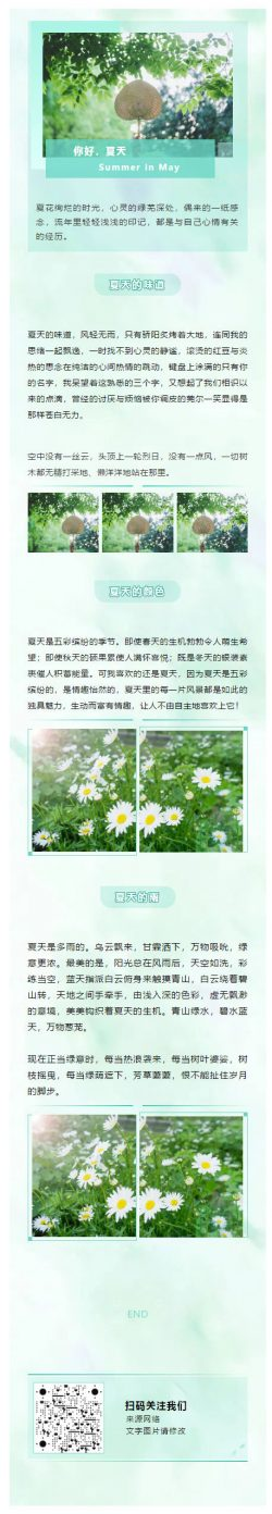 夏天夏日绿色背景图模板清爽风格公众号推送文章素材推文模板