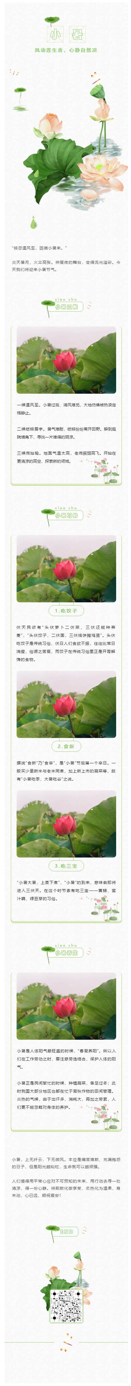 小暑二十四节气之后中国传统节日中国风荷叶荷花微信素材模板