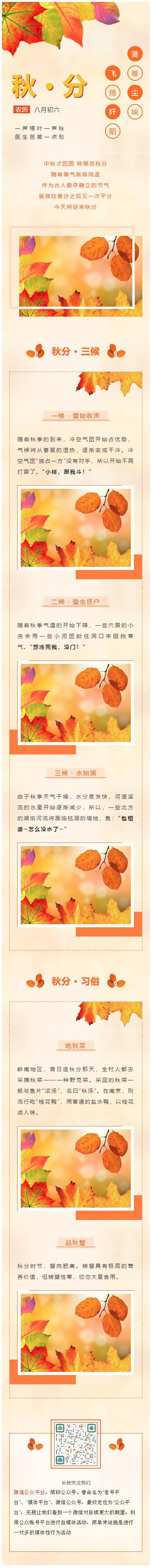 秋分二十四节气秋天黄色落叶风格微信公众号推文模板推送图文素材