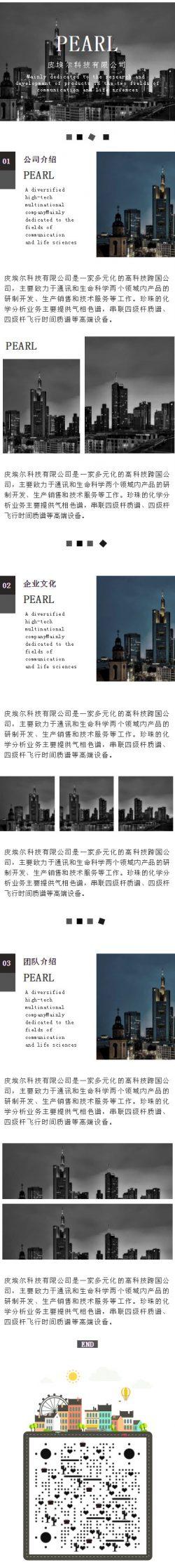 公司介绍公司概况企业文化黑色高端风格模板大气推送图文素材