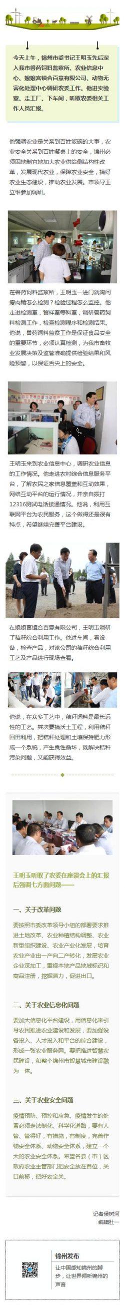 党政教育官方微信文章模板
