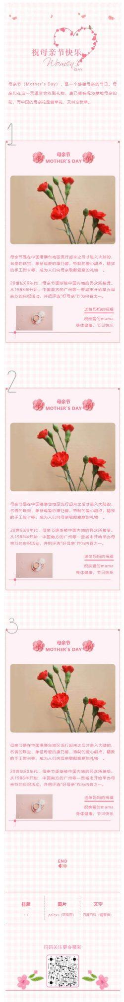 母亲节快乐粉红微信公众号模板红色康乃馨微信营销素材