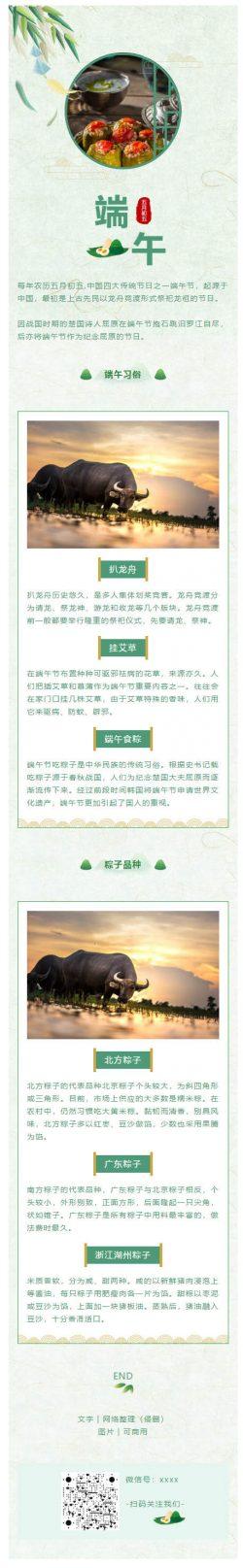 端午节绿色风格传统节日粽子微信公众号推送图文模板推文素材